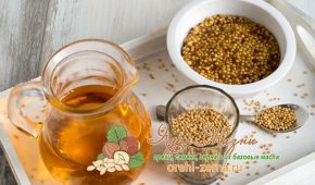 Миниатюра к статье Горчичное масло — описание, применение и основные свойства