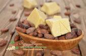 Миниатюра к статье Ароматное масло какао — полный обзор его всех полезных свойств и применения