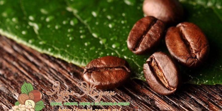 Миниатюра к статье Все о кофейных зернах — полный обзор и его влияние на организм человека