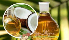 Миниатюра к статье Разница пальмового масла от кокосового — в чем отличие и какое полезнее