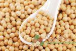 Миниатюра к статье Генетически модифицированная соя: польза и вред в продуктах