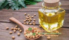 Миниатюра к статье Полезные свойства масла из сои и применение в кулинарии и косметологии