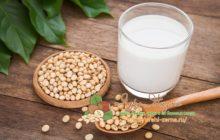 Миниатюра к статье Полезные свойства соевого молока, применение и противопоказания