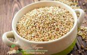 Миниатюра к статье Раскрываем все секреты про пользу и вред зеленой гречки для организма — проращивание для здоровой еды